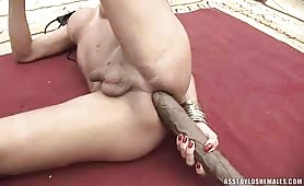 Tranny Mickelly Brasilia Plays With Her New Monster Dildo.
